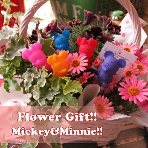 母の日 鉢植え ディズニー フラワーギフト 季節のお花お任せギフト♪ ミッキー ミニー マスコット5個入り 母の日 花鉢 プレゼント
