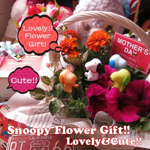 母の日 鉢植え スヌーピー入り カラフルスヌーピー4個入り フラワーギフト 季節のお花お任せギフト♪ スヌーピーいっぱい 母の日 花鉢 プレゼント