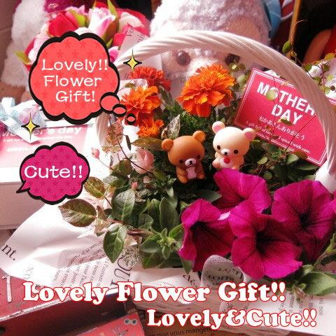 母の日 鉢植え リラックマ入り  フラワーギフト 季節のお花お任せギフト♪ リラックマ コリラックマ 母の日 花鉢 プレゼント