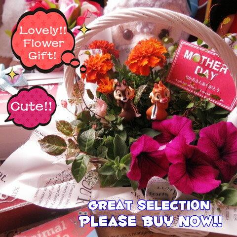 母の日 鉢植え ギフト ディズニー フラワーギフト 季節のお花お任せギフト♪ チップ&デール入り 母の日 花鉢 プレゼント