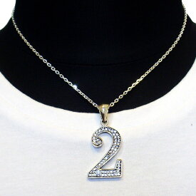 【Luz azul シルバー925 特注Lサイズ ナンバーネックレス No.2 送料無料】ジルコニア装飾 Silver925 数字ネックレス