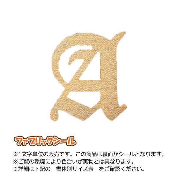 飾り文字ファブリックシール(アルファベット5cmサイズ)刺繍調【金・銀】
