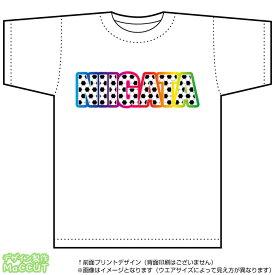 新潟サッカーTシャツ(白)(Jリーグ/応援/ホーム/サポーター/チーム/サッカーボール)