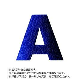 アイロンワッペン文字(3cmサイズ/アルファベット)