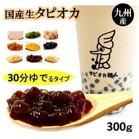 【送料無料】国産 生タピオカ ストロー10本セット300g(約18杯分)11味から選べるタピオカ