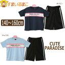 CUTE PARADISE 半袖 Tシャツ ハーフパンツ ジャージ 上下セット 140cm 150cm 160cm ネイビー サックス 2540 キュートパラダイス 子供服…