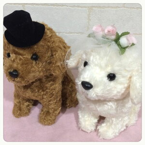 ウェディングドール トイプードル 犬 Wedding Doll 日本製 【ウェルカムドール/ウェディングぬいぐるみ/ウェルカムドッグ/ウェディングドッグ/ブライダル/結婚祝い/いぬ/イヌ/
