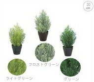 【観葉植物/造花】■30cmクレストツリー(インテリア・ディスプレイ・アレンジ・屋外使用)