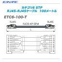 CANARE(カナレ)RJ45ケーブル『ETC6-100-T』【代引き手数料無料♪】
