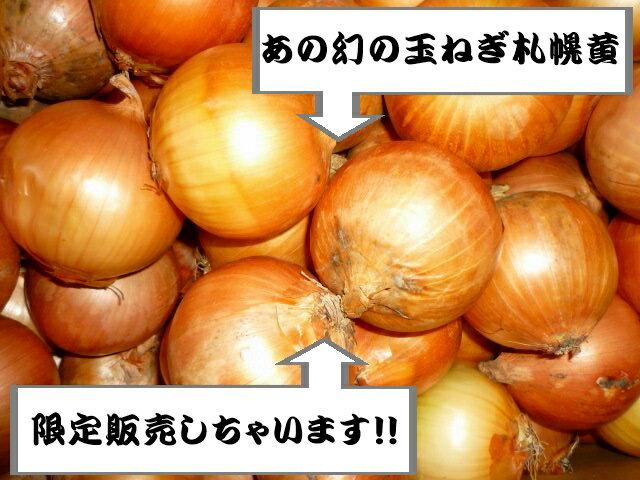 北海道産幻の北海道玉ねぎ 札幌黄2Lサイズ 10kg
