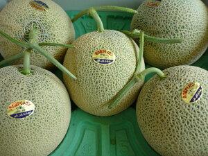 送料無料 北海道富良野産農協共選富良野メロン糖度13度以上 秀品 3〜6玉入り 8kg元箱