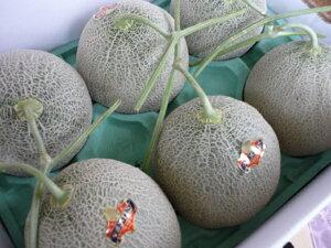 送料無料 最上級品 北海道夕張産農協共選夕張メロン糖度12%以上 秀品4〜6玉入り 合計8kgの元箱
