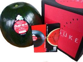送料無料 優品規格 贈答用 糖度保障北海道当麻産真っ黒な特特大でんすけすいか糖度11度以上 5Lサイズでなんと10kg以上