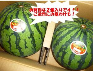 送料無料 北海道を代表するスイカ 北海道共和町産ギフトに最適 訳なし らいでんすいか糖度11度以上 2L〜3Lサイズで1玉当たり5.5kg以上2玉入りで10kg以上!