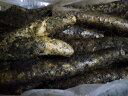 送料無料 北海道産〜土付長いも粘り甘みがありうま〜い訳あり長いも 10kg