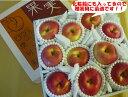 北海道産 贈答用 あの懐かしい味貴重な印度(いんど)りんご中玉 10玉入り