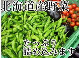 送料無料!冷蔵便込!北海道産四季のとれたて野菜詰め合わせセットお試し8種類入り