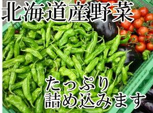 送料無料!チルド便込!北海道産四季のとれたて野菜詰め合わせセットお試し8種類入り