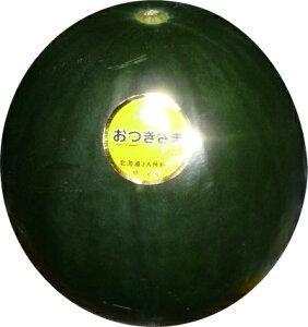 送料無料 お月様みたい!? 北海道月形産黒皮お月様すいかあま〜い黄色いスイカ 6kg以上の貴重なスイカ