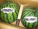 送料無料(一部地域除きます)北海道産訳あり 大玉すいか2L〜4Lサイズで1玉当たり5.5kg以上2玉入りで10kg以上!