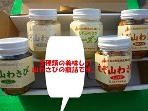 北海道江別産あの辛さがたまらない 山わさびの瓶詰め5本ギフトセット