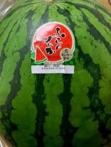 送料無料 北海道富良野産訳あり 大きいふらのすいか3Lサイズ以上でなんと1玉当たり6kg以上