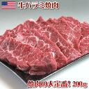 【アメリカ産】牛はらみ(ハラミ)焼肉 200g