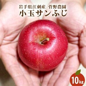 蜜入り小玉サンふじ 10kg 46玉〜50玉 ちょっと訳あり ご家庭用 林檎 送料無料 江刺 リンゴ りんご