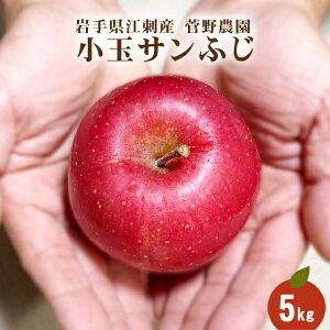 蜜入り小玉サンふじ 5kg 23玉〜25玉 ちょっと訳あり ご家庭用 林檎 送料無料 江刺 リンゴ りんご