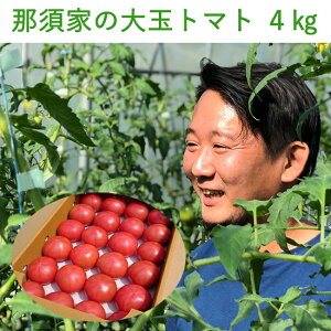 【ポイント10倍】那須家のトマト 桃太郎またはりんか 秀品 約4kg とまと