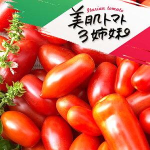 【食べて応援20%クーポン対象商品】加熱で倍うまい!イタリアントマト 2kg ミニトマト イタリアントマト 加熱用トマト 調理用トマト とまと めぐり菜 トマト