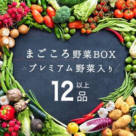 新鮮!野菜セット 卵含む計12品以上 一関野菜 おおまち新鮮館 産地直送 岩手 おうちごはん