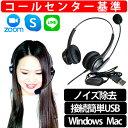 【説明動画あり】【簡単接続USBヘッドセット】日本サポート マイク付き PC用 最軽量 USBステレオヘッドセット Pro-gro…