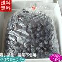 冷凍ブルーベリー(サイズふぞろい品)1kg【送料無料】国産!農薬不使用!加工用岩手県産【送料込み】02P03Sep16※沖…