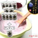 ブルーベリーパウダー30g×10袋+1袋岩手県遠野市産ブルーベリー使用 農薬不使用・砂糖不使用・完熟ブルーベリーだけをそのままパウダ…