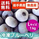 【送料無料】【29年産】【農薬不使用】遠野で育った大粒の冷凍ブルーベリー1kg(Lサイズ)【がんばろう!岩手】【岩手…