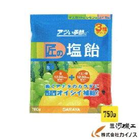 【熱中症対策】 匠の塩飴 MLSアソート <N20-13> マスカット レモン スイカ ミックス タブレット 750g