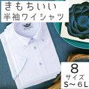 ワイシャツ 半袖 形態安定 メンズ 3L 4L 5L 6L10柄 h21-h30大きいサイズ ゆったり クールビズ