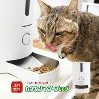 猫自動給餌器