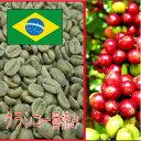【生豆】ブルボン・クラシコ一番摘み1kg