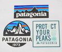 訳あり パタゴニア ステッカー 光沢 3種セット PATAGONIA フィッツロイスコープ P-6 プロテクトユアピークス FITZROY シール SET 新品