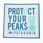 パタゴニアプロテクトユアピークスステッカーPatagoniaPROTECTYOURPEAKSトライデントフィッシュシールデカールネコポス新品