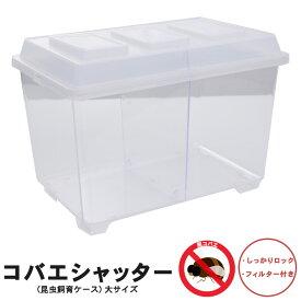 【コバエシャッター「昆虫飼育ケース」大サイズ(内部仕切りなし)】