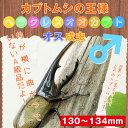 ヘラクレスオオカブト成虫 オスの130mm〜134mm