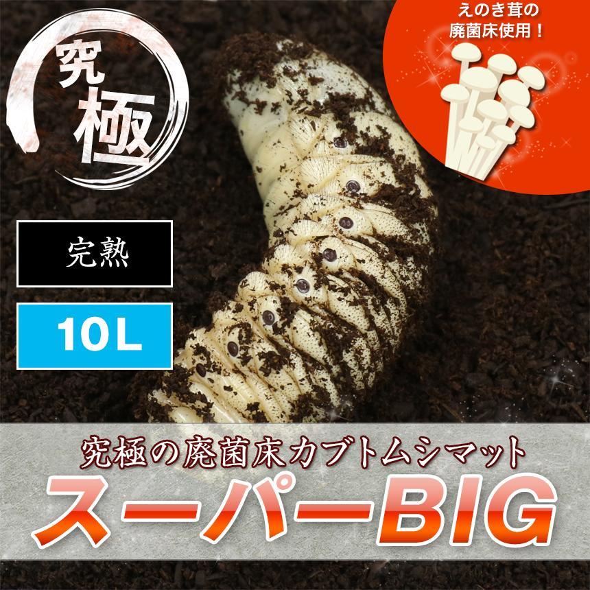 【超高カロリー! 廃菌床 カブトムシマット「スーパーBIG」】 スーパービッグ 昆虫マット カブトムシ幼虫のえさ 幼虫餌 えさ 完熟マット カブトマット
