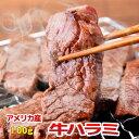 内祝 2020 ギフト 誕生日 プレゼント 牛肉 ハラミ US 100g 焼肉 バーベキュー BBQ
