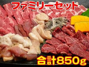 お歳暮 御歳暮 ギフト プレゼント 誕生日 2020 牛肉 ファミリーセット カルビ200g ハラミ200g 豚ロース100g 鶏もも肉100g ホルモン50g 大腸50g センマイ50g シンゾウ50g 並ミノ50g 焼肉 バーベキュー