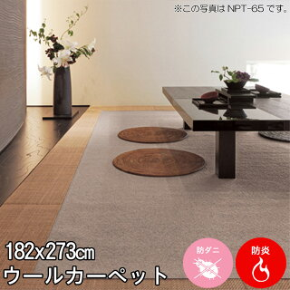杢調の柔らかい色合いが心地よい空間を演出♪シンプルなカラーとデザインウール100%カーペット