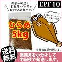 (送料無料※宅配) ひらめEPF10(浮上性)5kg/コイのごはん・熱帯魚の餌・アロワナのエサ(金魚小屋-希-福岡)