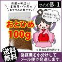 Otohime b1 00100